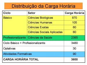 carga_horaria_curso_NTR